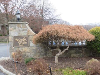 Ossining Condo/Townhouse For Sale: 6-10 Briarcliff Drive