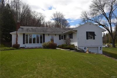 Dover Plains Single Family Home For Sale: 204 Nellie Hill Acres