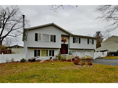 Rockland County Single Family Home For Sale: 17 Terrace Avenue