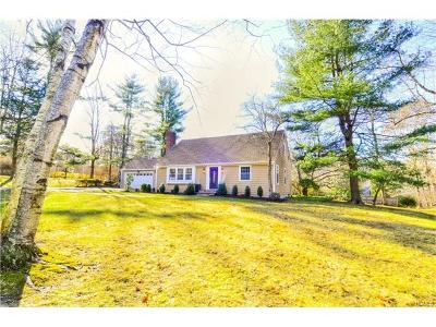 Connecticut Single Family Home For Sale: 49 Ritch Drive