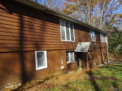 Putnam County Single Family Home For Sale: 1151 Peekskill Hollow Road