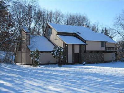 Lagrangeville Single Family Home For Sale: 2 Sundance Road