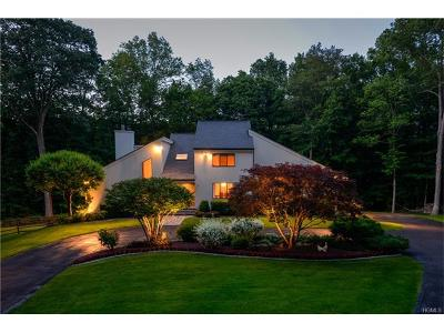 Westchester County Single Family Home For Sale: 9 Hunts Lane