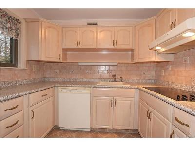Westchester County Condo/Townhouse For Sale: 131d Columbia Court