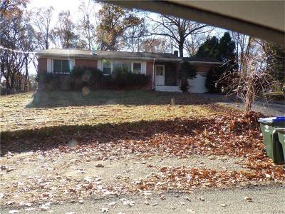 Newburgh Single Family Home For Sale: 15 Leonard Avenue