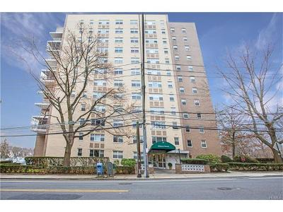 White Plains Condo/Townhouse For Sale: 30 Lake Street #7E