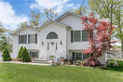Nanuet Single Family Home For Sale: 21 New Clarkstown Road