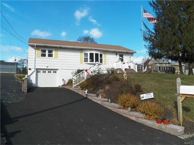 New Windsor Single Family Home For Sale: 6 Birchwood Drive