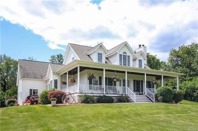Dutchess County Single Family Home For Sale: 35 Rymph Road