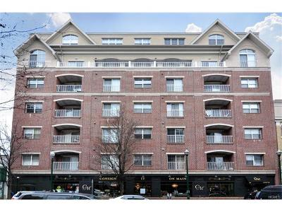 New Rochelle Condo/Townhouse For Sale: 543 Main Street #214