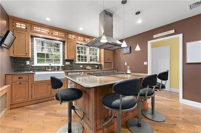 Somers Single Family Home For Sale: 19 Butler Hill Road