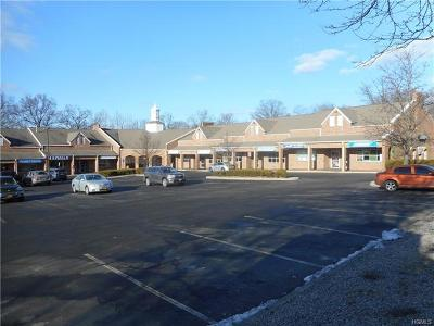 Commercial For Sale: 285 North Route 303