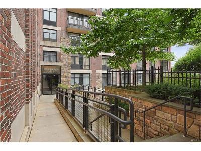 Bronx Condo/Townhouse For Sale: 3536 Cambridge Avenue #6B