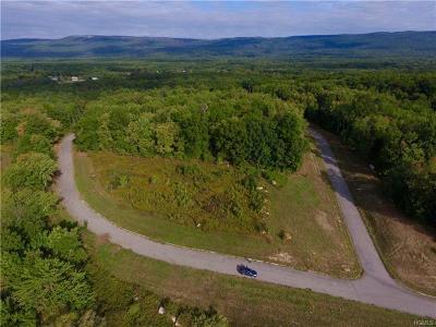 Pine Bush Single Family Home For Sale: 60 Bert McCord Drive