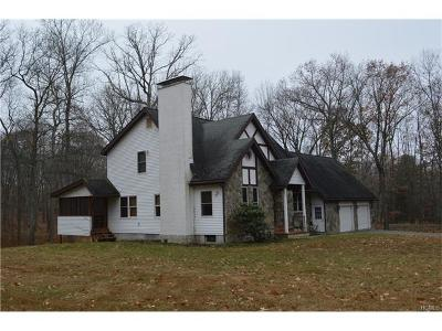 Staatsburg Single Family Home For Sale: 84 Nine Partners Road