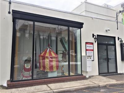 Nyack Commercial For Sale: 267 Main Street #C