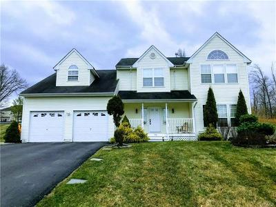 Dutchess County Single Family Home For Sale: 22 Ash Road