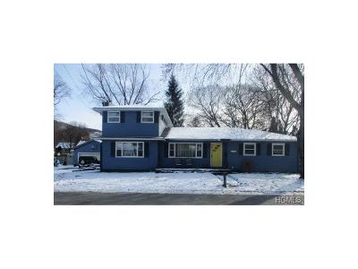 Port Jervis Single Family Home For Sale: 5 Ada Street