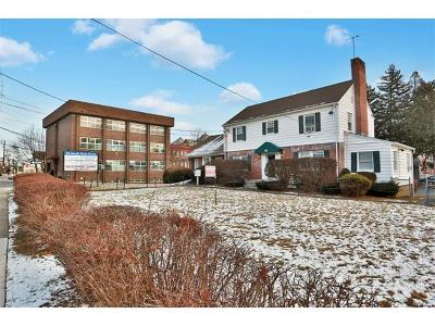 Commercial For Sale: 52 South Main Street