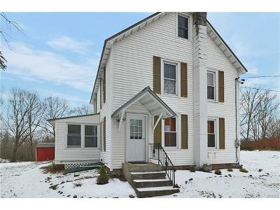 Pleasant Valley Single Family Home For Sale: 241 Pine Hill Road