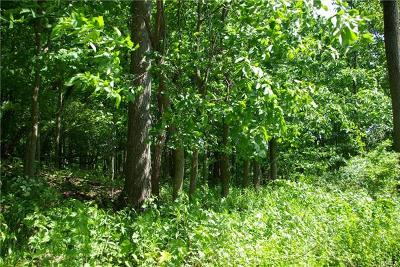 Amawalk Residential Lots & Land For Sale: 2 Amawalk Point Road