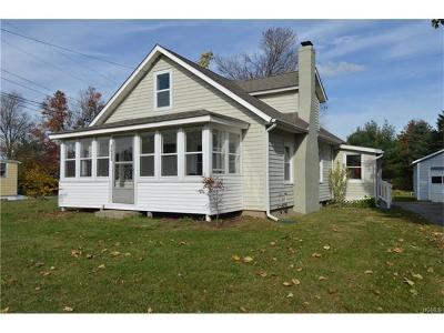 Pine Plains Single Family Home For Sale: 2795 Church Street