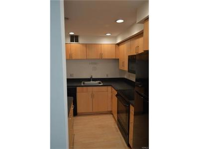 Yonkers Condo/Townhouse For Sale: 115 Dehaven Drive #303