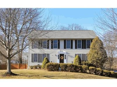 Single Family Home For Sale: 21 Nytko Drive
