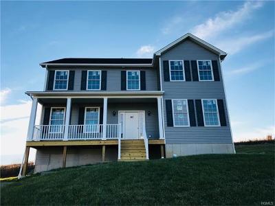 Poughkeepsie Single Family Home For Sale: 107 Stratford Drive