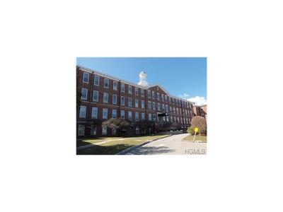 Peekskill Condo/Townhouse For Sale: 3402 Villa At The Woods