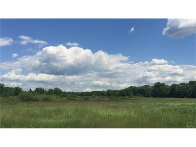 Orange County, Sullivan County, Ulster County Residential Lots & Land For Sale: 1741 State Route 32 East Side