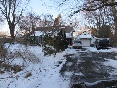 Rye Brook Single Family Home For Sale: 717 Westchester Avenue
