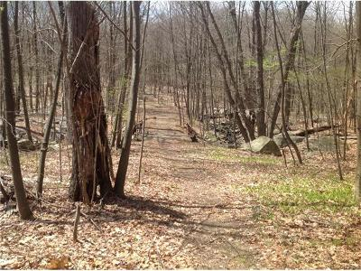 Stormville Residential Lots & Land For Sale