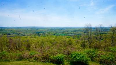 Residential Lots & Land For Sale: Tbd Mountain Road