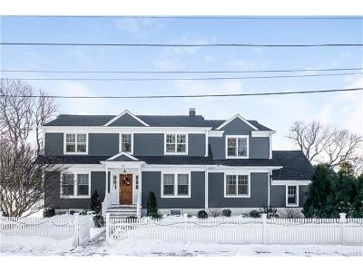 Rye Single Family Home For Sale: 20 Manursing Avenue