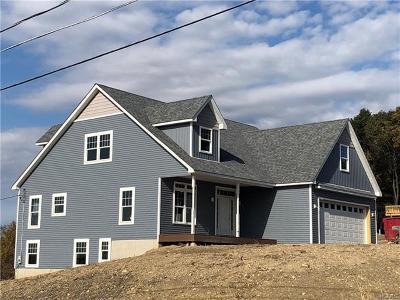Goshen Single Family Home For Sale: 1 Hopkins Terrace