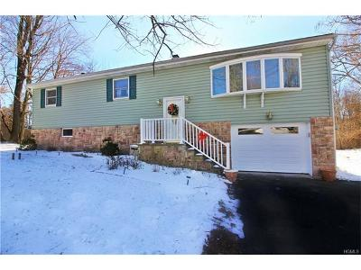 Putnam County Single Family Home For Sale: 25 Parker Drive