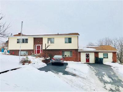 Newburgh Single Family Home For Sale: 29 Loscerbo