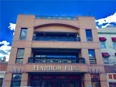 Nyack Commercial For Sale: 91 Main Street