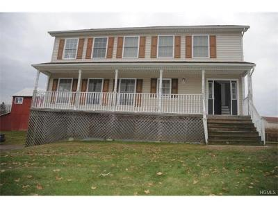 Goshen Single Family Home For Sale: 40 Maloney Lane