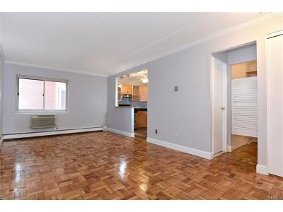 Scarsdale Co-Operative For Sale: 372 Central Park #3V