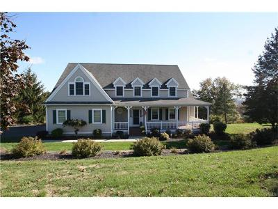 Goshen Single Family Home For Sale: 8 Summit View