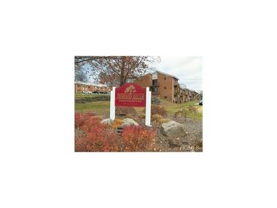 Orange County, Sullivan County, Ulster County Rental For Rent: 37 Poplar