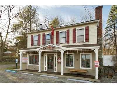 Brewster Single Family Home For Sale: 12 Old Route 6