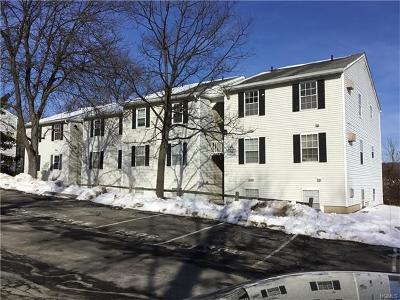 Harriman Condo/Townhouse For Sale: 13 Lexington Hills Road #11
