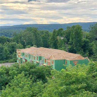 Hyde Park Single Family Home For Sale: 289 Hudson View Terrace