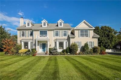 Rye Brook Single Family Home For Sale: 11 Birch Lane