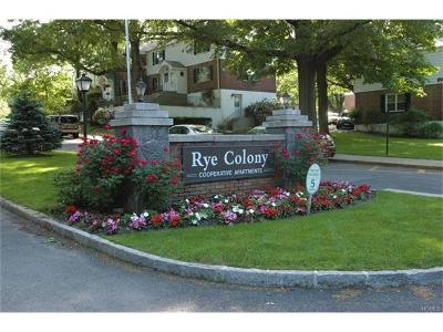 Westchester County Co-Operative For Sale: 26 Peck Avenue #26A