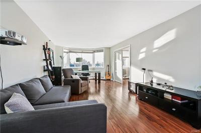White Plains Condo/Townhouse For Sale: 14 Nosband Avenue #6A