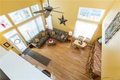 Dutchess County Single Family Home For Sale: 120 Birchwood Way
